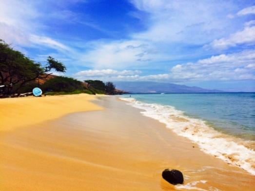 Oluwalu Beach
