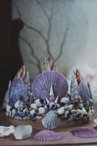 Shells for Ocean Ceremony